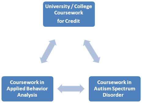 applied behavior analysis coursework This course provides an introduction to the causes and diagnosis of autism, scientific validation, applied behavior analysis, and ethical treatment students also learn to write functional objectives, plan positive reinforcement, and design an applied measurement system in the context of developing individualized family service plans and .